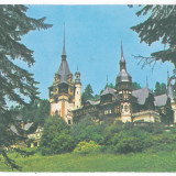 7009 - Romania ( 106 ) - Prahova, SINAIA, Peles - postcard - used - 1986 - Carte Postala Muntenia dupa 1918, Circulata, Printata