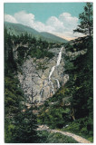 3062 - Sibiu, Negoiu, Cascada SERBOTA - old postcard - unused, Necirculata, Printata