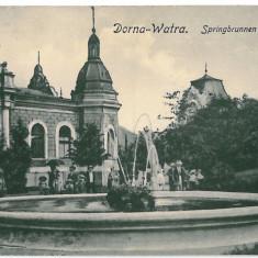2905 - Bukowina, Suceava, VATRA-DORNEI, park - old postcard - used - 1918 - Carte Postala Bucovina 1904-1918, Circulata, Printata