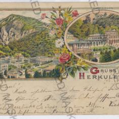 2890 - L i t h o, Banat, Baile HERCULANE - old postcard - used - 1900 - Carte Postala Banat pana la 1904, Circulata, Printata