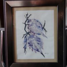 Tablou cu rama - Frunze stilizate - Creion si acuarela - Semnat - Pictor strain