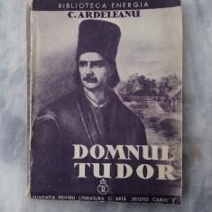 Domnul Tudor - Istorie