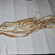Fibra de canepa decorticata