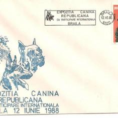 INTREG POSTAL 4866/7/8 ROMANIA, EXPOZITIE CANINA REPUBLICANA CU PARTICIPARE INTERNATIONALA, BRAILA, 12.06.1988, 3 PLICURI OCAZIONALE, CAINE, CAINI., Dupa 1950