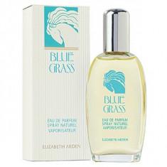Elizabeth Arden Blue Grass EDP 100 ml pentru femei - Parfum femeie Elizabeth Arden, Apa de parfum, Lemnos