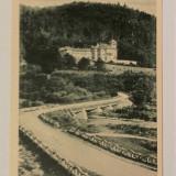 POIANA TAPULUI- CARTE POSTALA ANII 30 - Carte postala tematica, Necirculata, Printata