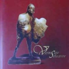 Vernisaje Selective - Valentin Ciuca, 522985 - Album Arta