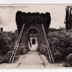 CRAIOVA, PARCUL, PODUL SUSPENDAT, STAMPILA CENZURAT CRAIOVA - Carte Postala Oltenia dupa 1918, Circulata, Fotografie