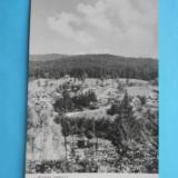 HOPCT 6586 A - POIANA TAPULUI -VEDERE SPRE ZAMORA -RPR [ CIRCULATA]