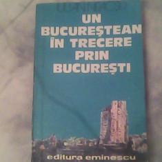 Un bucurestean in trecere prin Bucuresti-Iulian Neacsu - Roman, Anul publicarii: 1979
