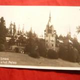 Ilustrata Sinaia - Castel Peles, interbelica - Carte Postala Muntenia dupa 1918, Necirculata