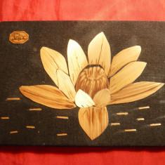 Tablouas pe lemn - Lotus - Baile Felix - 14, 8 x 9, 8 cm