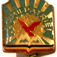 ROMANIA RSR INSIGNA SOIMII PATRIEI, VARIANTA DIN ALAMA - 18 x 16 mm **, Romania de la 1950