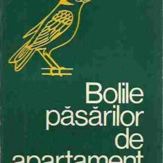 F. Robiller - BOLILE PASARILOR DE APARTAMENT - Carte Zoologie