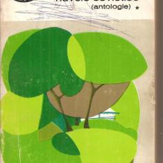 (C5726) COLIBA DIN PADURE. NUVELE SOVIETICE, antologie, vol.1, 1945-1965, EDITURA PENTRU LITERATURA, 1965 - Nuvela