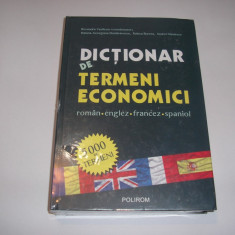 Dictionar de termeni economici roman englez francez spaniol - Ruxandra Vasilescu, RF7/2 - Carte afaceri