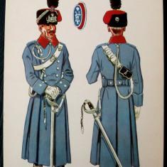 MILITAR OFITER COLONEL UNIFORMA GALA ANII 1911 - 1922, 159 x 112 mm, model 2 ** - Fotografie veche
