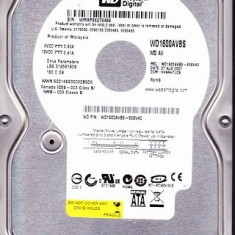 Hard disk  WESTERN  DIGITAL  Caviar 160 Gb