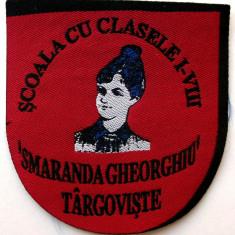 ROMANIA ECUSON SCOALA CU CLASELE I - VIII SMARANDA GHEORGHIU TARGOVISTE **