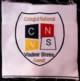 ROMANIA ECUSON COLEGIUL NATIONAL VLADIMIR STREINU GAESTI 98 x 98 mm **