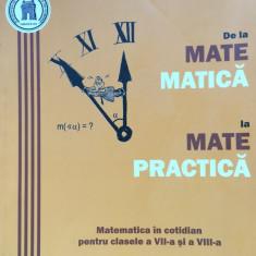 DE LA MATEMATICA LA MATEPRACTICA - Mihaela Singer, Cristian Voica - Culegere Matematica