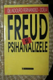 Freud si psihanalizele  / Adolfo Fernandez-Zoila 1996