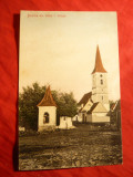 Ilustrata Saliste - Biserica din Sibiel ,inc.sec.XX ,Ed. N.Tintea Saliste Sibiu