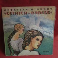 Cetatea Babele - Octavian Mandrut, vinil povesti - Muzica pentru copii