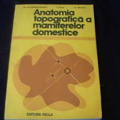 ANATOMIA TOPOGRAFICA A MAMIFERELOR DOMESTICE-G.M.C.TINESCU-C.RADU-R. PALICIA- - Carte Cultura generala