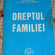RWX 16 - DREPTUL FAMILIEI - EMESE FLORIAN - EDITAT IN 1997 - Carte Dreptul familiei