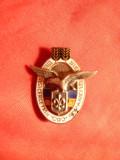 Insigna miniatura - Cercetasii Romaniei ,numerotata ,cu vultur de argint , h= 1,9 cm - fara ac