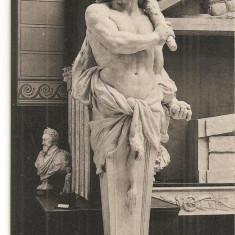 CPI (B5142) MUZEUL DE SCULPTURA COMPARATA, VERSAILLES, HERCULE, TERME PAR LECOMTE, NECIRCULATA,, Fotografie