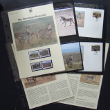 NAMIBIA - ZEBRE WWF, 4 VALORI, 4 ILUSTRATE MAXIME SI 4 FDC-URI CU CARTON PREZENTARE -  IM 0229
