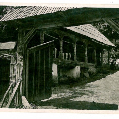 2336 - MARAMURES, Peasant house - old postcard, real PHOTO - unused - Carte Postala Maramures dupa 1918, Necirculata, Fotografie