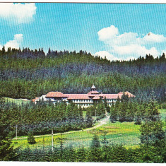Carte postala necirculata Stana de Vale Bihor - Carte Postala Transilvania dupa 1918