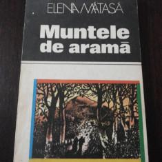 MUNTELE DE ARAMA -- Elena Matasa -- 1982, 128 p.