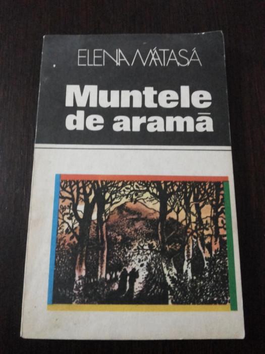 MUNTELE DE ARAMA -- Elena Matasa -- 1982, 128 p. foto mare