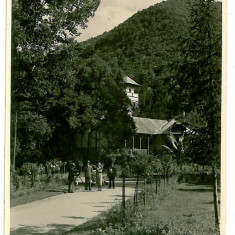 2367 - Valcea, CALIMANESTI - old postcard, real PHOTO - unused - Carte Postala Oltenia 1904-1918, Necirculata, Fotografie