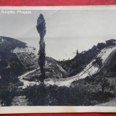 Vedere/Carte postala - Bulevardul Regina Maria - Carte Postala Banat dupa 1918