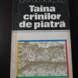TAINA CRINILOR DE PIATRA -- Ion Puiu Stoicescu [autograf al autorului] -- 1982, 216 p. - Carte de calatorie