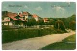 2444 - Valcea, OLANESTI - old postcard - unused, Necirculata, Printata