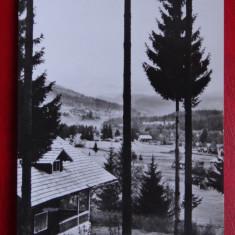 Carte Postala - RPR - Alb Negru - Colibita