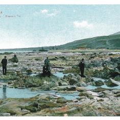 902 - ORSOVA - old postcard - unused