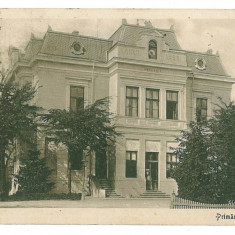 947 - PITESTI, Primaria - old postcard, CENSOR - used - 1916