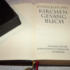 BIBLIE  IN  LIMBA  GERMANA