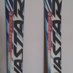 Schiuri Skiuri Dynastar Course GS World Cup model FIS  176 cm