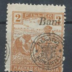 RFL 1919 ROMANIA Emisiunea Oradea seceratori 2 Bani eroare cu sursarj deplasat - Timbre Romania