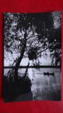 Carte Postala - RPR - Alb Negru - Apus de soare in Delta Dunarii