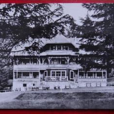 Carte Postala - RPR - Alb Negru - Campulung Moldovenesc - Carte Postala Banat dupa 1918