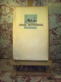 Cezar Petrescu - Oras patriarhal